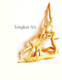 Kopi tongkat ali jogja- Kopi Radix Pasak Bumi- Kopi Radix Tongkat Ali